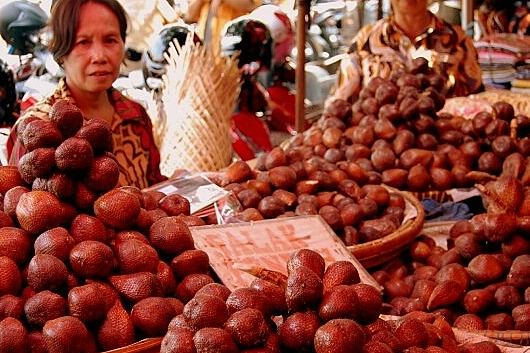 Salak - egzotyczny owoc z Indonezji