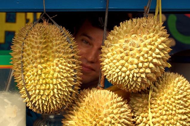 Duriany wyglądają jak przerośnięte kasztany.