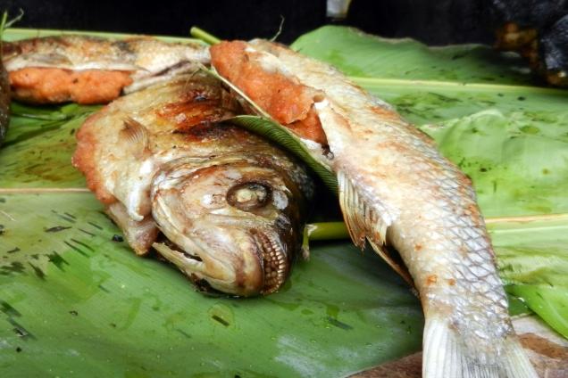 Jeśli nie zupa rybna to może pirania z grilla?