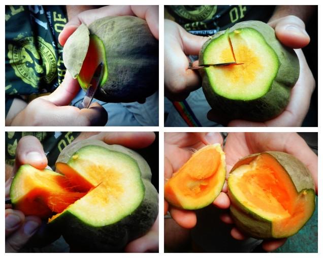 Sapote to owoce z peruwiańskiej dżungli