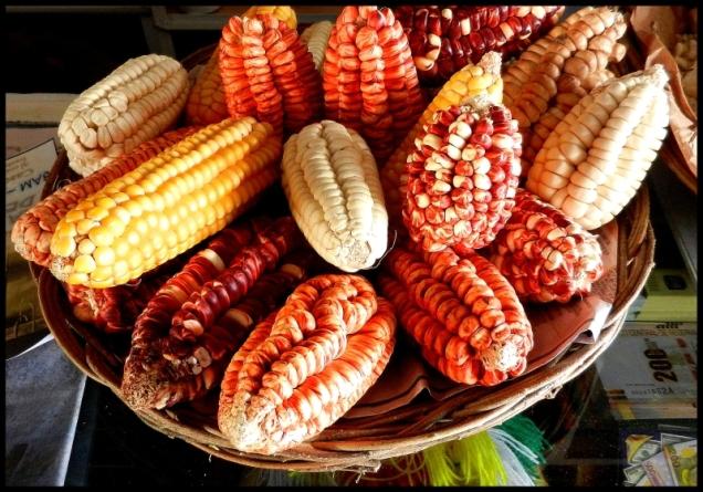 Kukurydza w Peru - do wyboru do koloru.